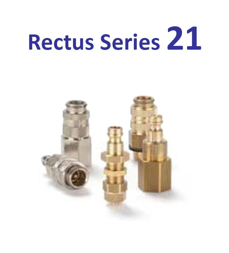 Rectus-series-21